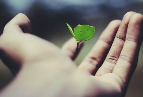 L'Italia e lo Sviluppo Sostenibile: la rubrica del Ministero dell'Ambiente